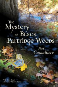 Mystery at Black Partridge Woods is the second book in the series.